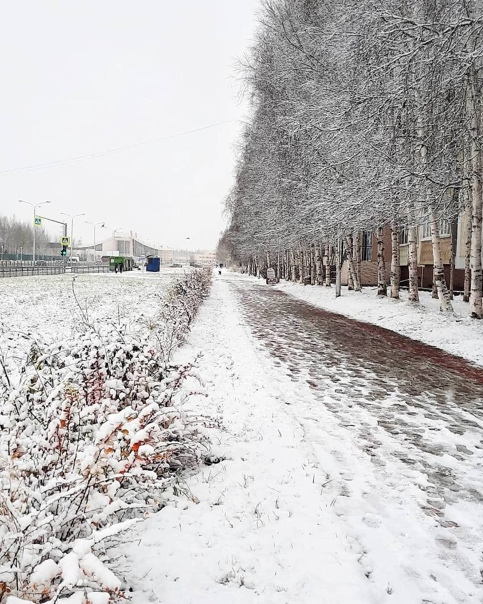☃Нижневартовск и Сургут наконец-то укрылись снежко...