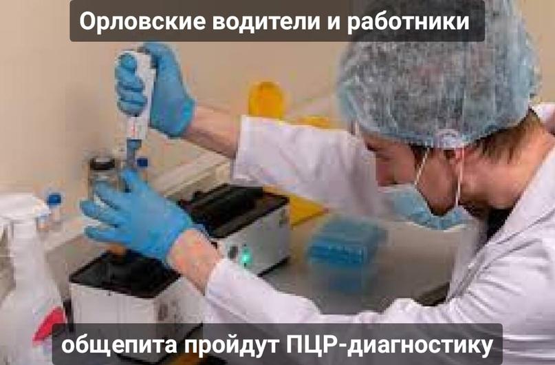 Орловские водители и работники общепита пройдут ПЦР-диагностику