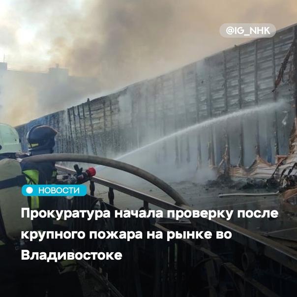 Прокуратура Владивостока начала проверку по факту ...