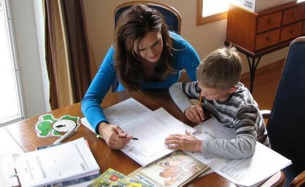 В школах Петербурга нет мест. Что делать? И есть ли альтернативные варианты?, изображение №6