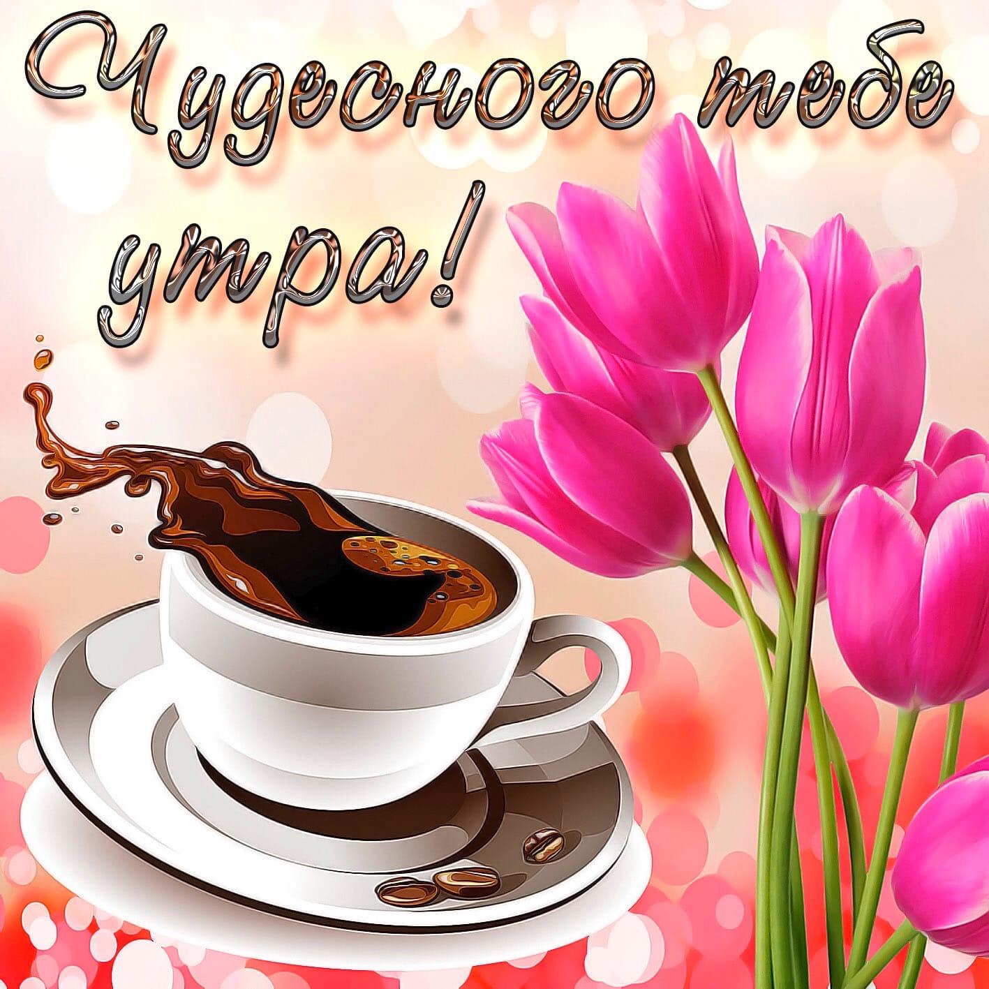 Коношане, доброго утра Вам!🥰