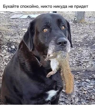 Роман Цуканов
