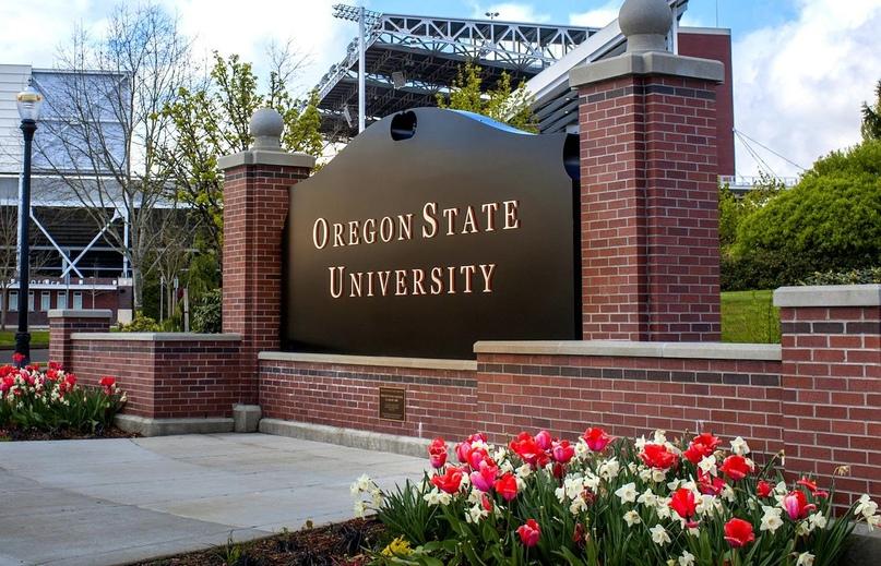 5 причин, почему стоит учиться в Oregon State University, США, изображение №1