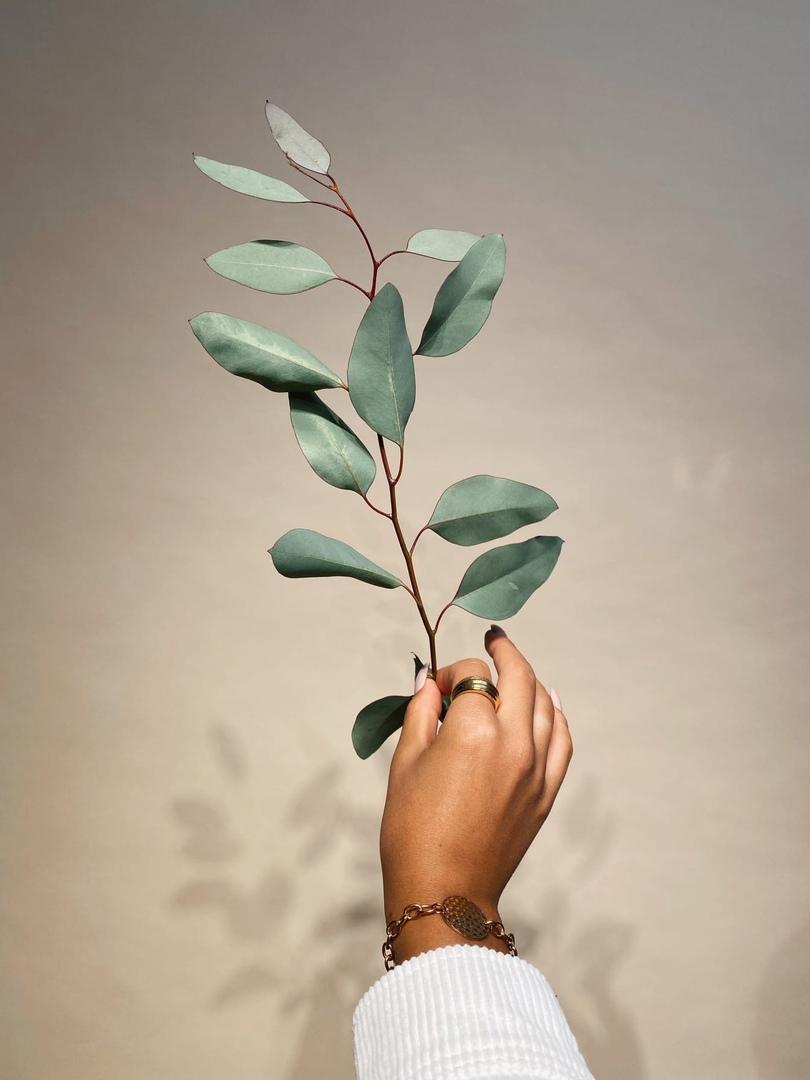 фото из альбома Лии Шамсиной №1