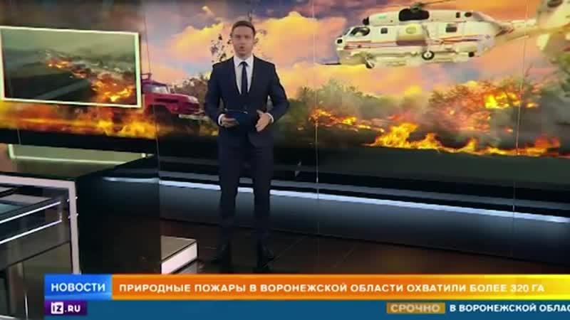 В Воронежской области природные пожары уничтожили больше 50 домов