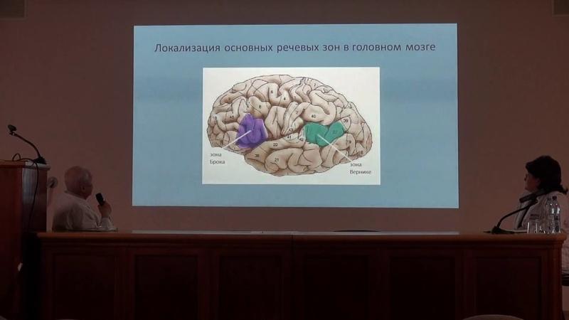 Нейропластичность основа восстановления функций после инсульта Лекция профессора А С Кадыкова