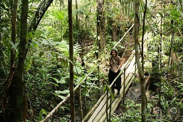 Проникновение за Санта-Росу Несмотря на отсутствие дорог в перуанской сельве, попасть в Амазонию совсем несложно было бы желаниеПо территории Перу протекает лишь небольшой участок величайшей в