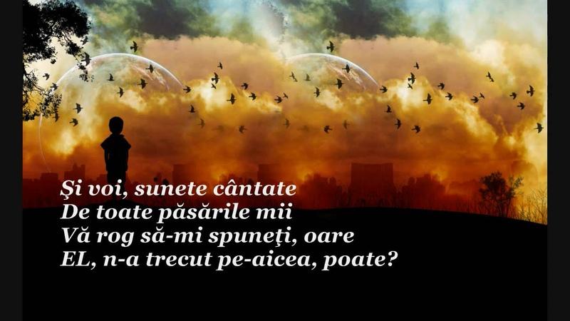 Liviu Gheorghe Vol de poezii Soaptele Inimii Asteptata chemare
