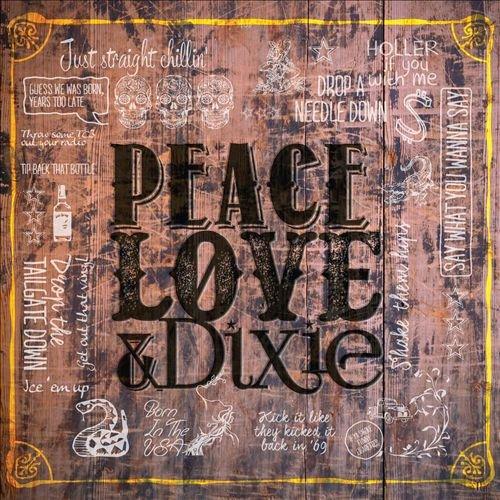 The Cadillac Three album Peace Love & Dixie