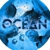Mr. Ocean - Соул Кавер Группа