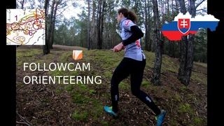 Orienteering training - forest with sand dunes