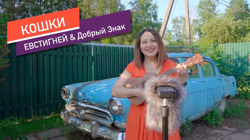Кошки Браво Жанна Агузарова cover by ЕВСТИГНЕЙ Добрый Знак