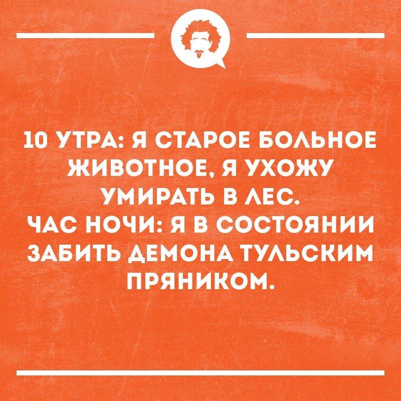 https://sun9-51.userapi.com/c7004/v7004592/6db90/UqNyE5Th_qA.jpg