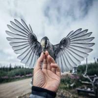 Фотография Идриса Гайтукаева ВКонтакте