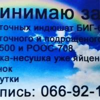 Фотография профиля Натальи Галкиной ВКонтакте