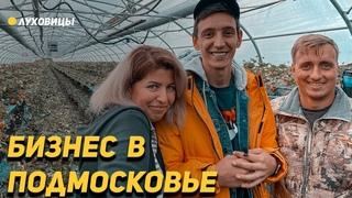 Бизнес в Подмосковье. Подписчики из Луховиц