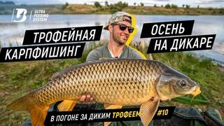 ТРОФЕЙНАЯ ОСЕНЬ. Первая результативная осенняя рыбалка сезона 2020.