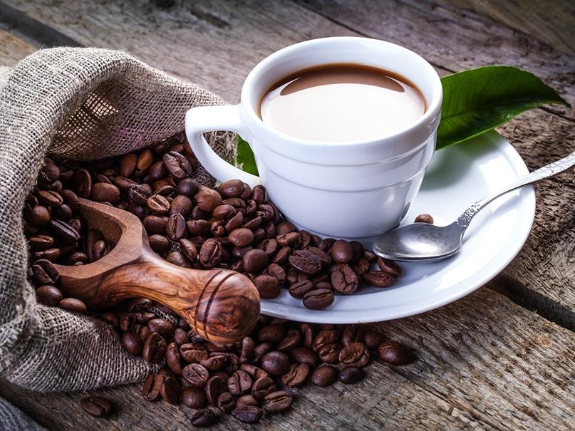 Кофе перед тренировкой: хорошо или плохо, изображение №2