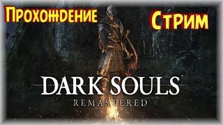 Cтрим по Dark Souls Remastered продолжаем / Дарк Соулс Прохождение #16