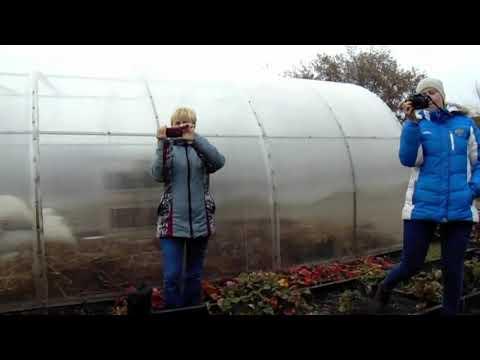 Железов Валерий Определение места посадки персика по биополю