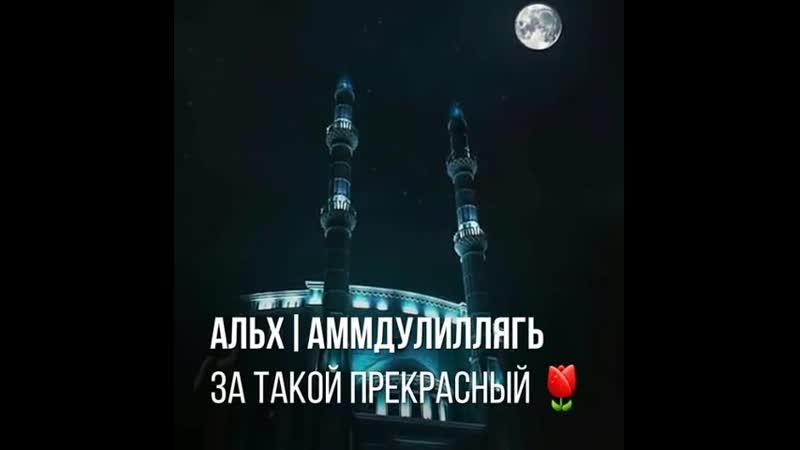 Sabr_terpiByQXm6WoZsA.mp4